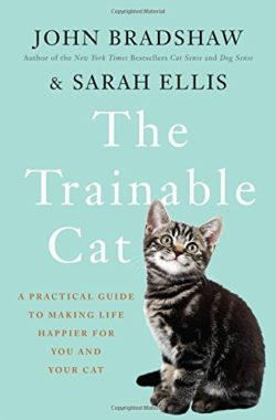 the-trainable-cat