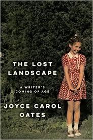 Lost Landscape